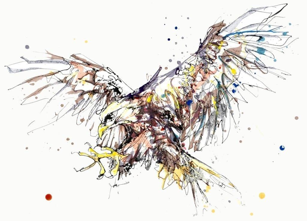 bird-of-prey_kathryn_callaghan_fine_art