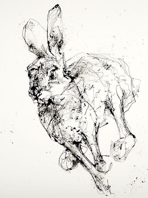 hare_monochrome_kathryn_callaghan_fine_art