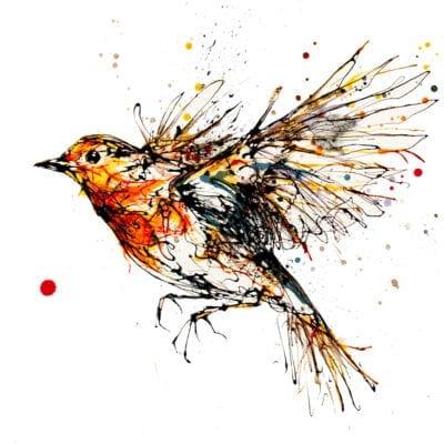 Airborne Robin Open Edition Print