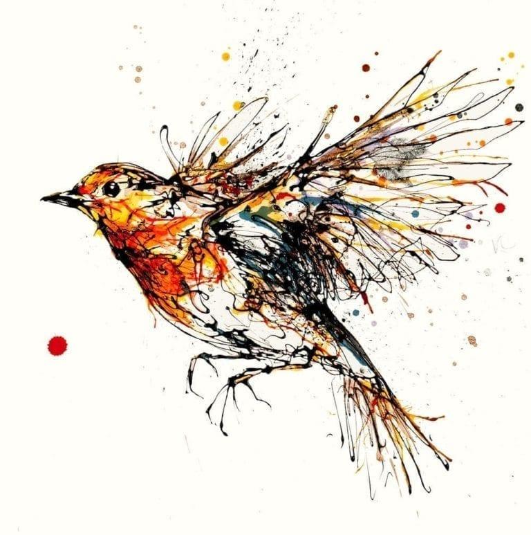 Robin in flight print by artist Kathryn Callaghan