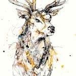 Stag print by artist Kathryn Callaghan