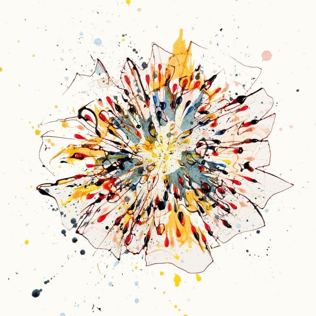 jn-firework-flower_kathryn_callaghan_art