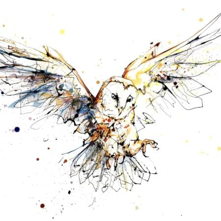 barn owl textured print