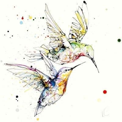 circling hummingbird