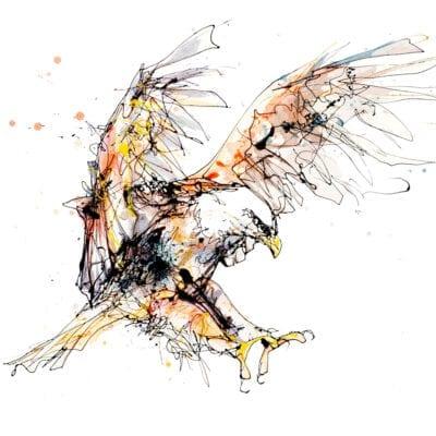 Descending Eagle Print