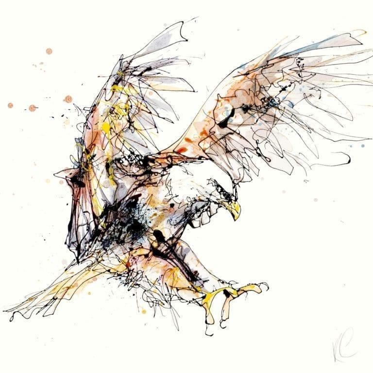 descending eagle in flight
