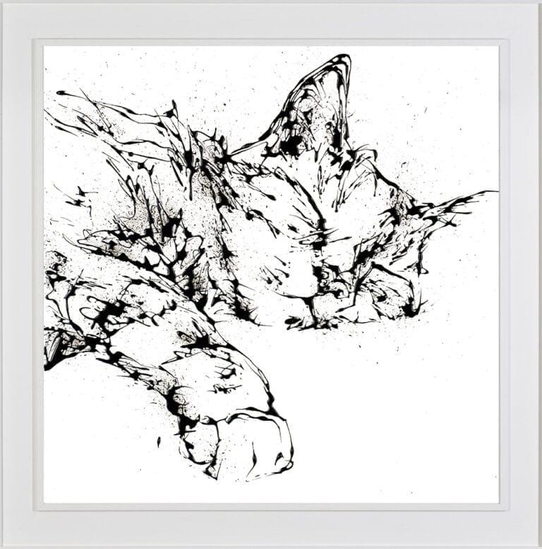 Dreamer shown in White Frame