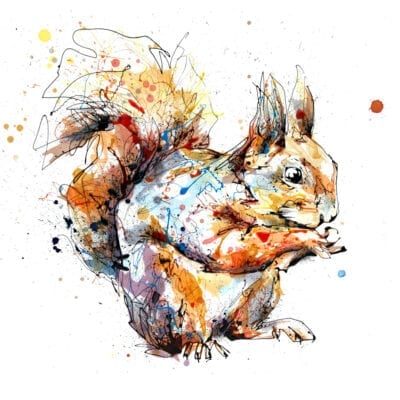 Nuts Red Squirrel Fine Art Print by Northern Ireland artist Kathryn Callaghan