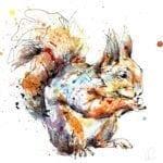 red squirrel print by kathryn callaghan