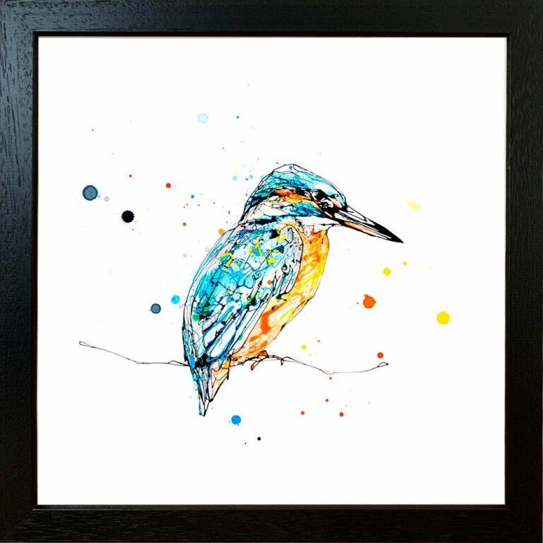 Gaze Kingfisher Paper Giclee Fine Art Print in Standard Black Frame