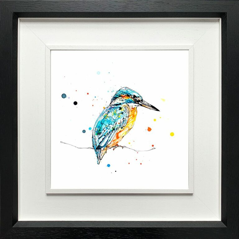 Gaze Kingfisher Paper Giclee Fine Art Print in Deluxe Black Frame