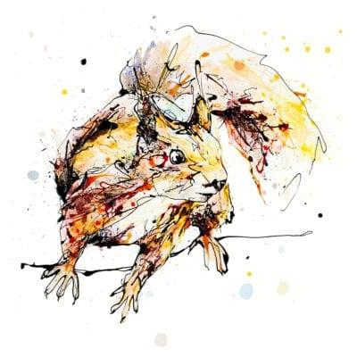 Get Set, Go! Red Squirrel Fine Art Print