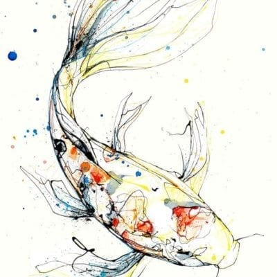 Koi Carp Fine Art Fish Print by Kathryn Callaghan Artist