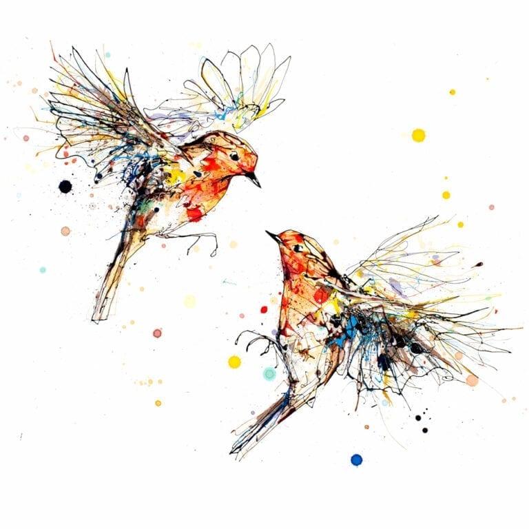 Showdown Fine Art Print of Two Robins Flying