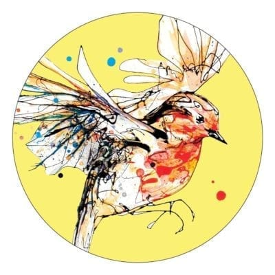 Premium Coaster with Robin design and yellow background