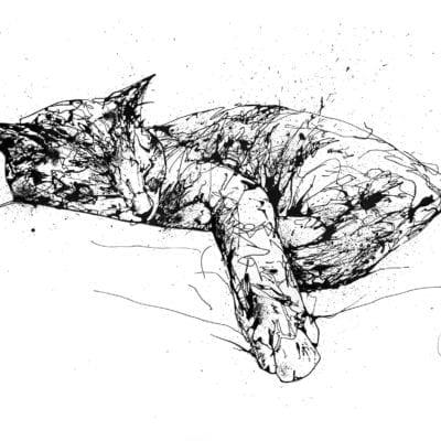 sleeping cat painting