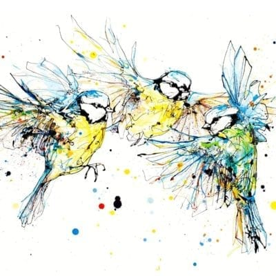 blue tits print by kathryn callaghan