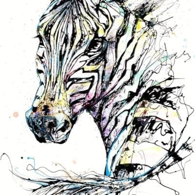 art print of zebra