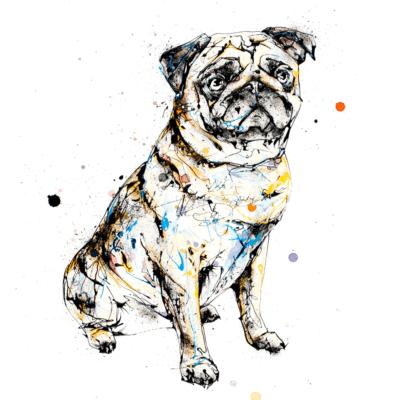 anticipation pug print