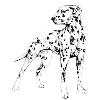 spots print