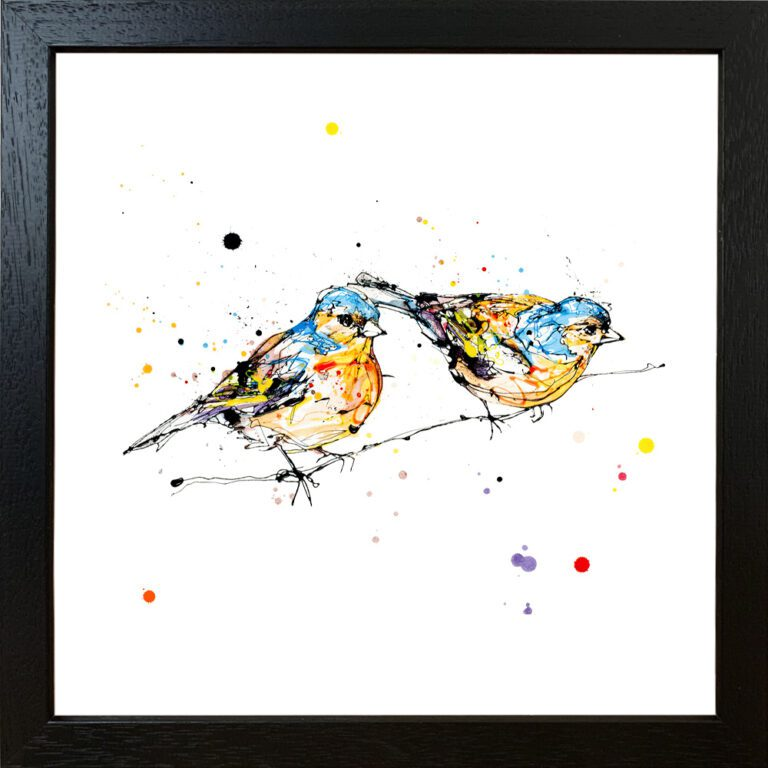 Did You See That Giclee Paper Fine Art Print of Two Chaffinches shown in Black FRame
