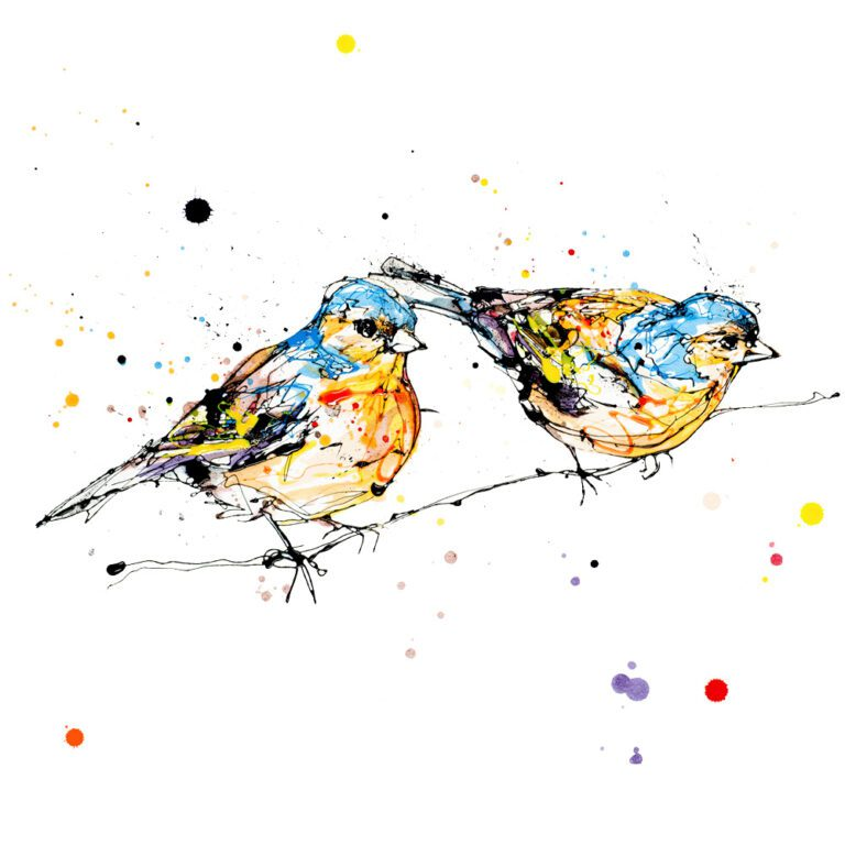 Did You See That Giclee Paper Fine Art Print of Two Chaffinches