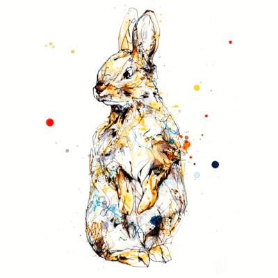 baby bunny rabbit print