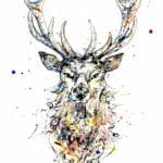 limited edition stag print