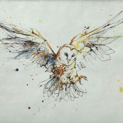 Accomplish Barn Owl Special Edition Giclee Fine Art Print on Awagami Washi Paper