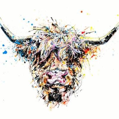 Angus highland cow art print