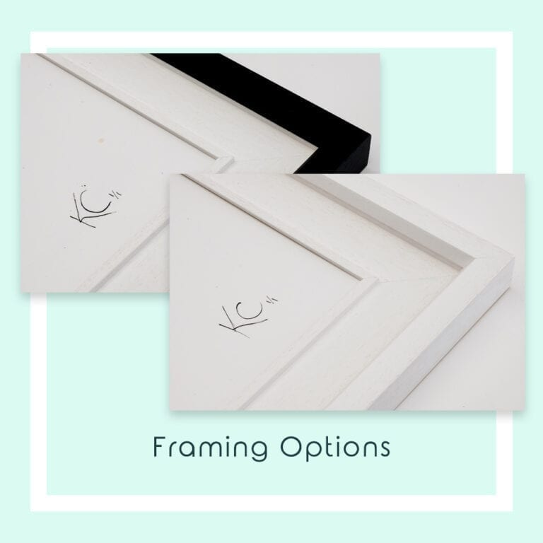 Framing Options for Garden Party Canvas Prints