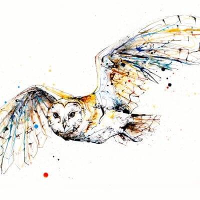 Guardian Barn Owl Original Image