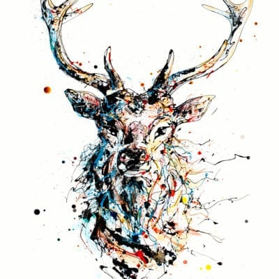 Majestic Stag Red Deer Print