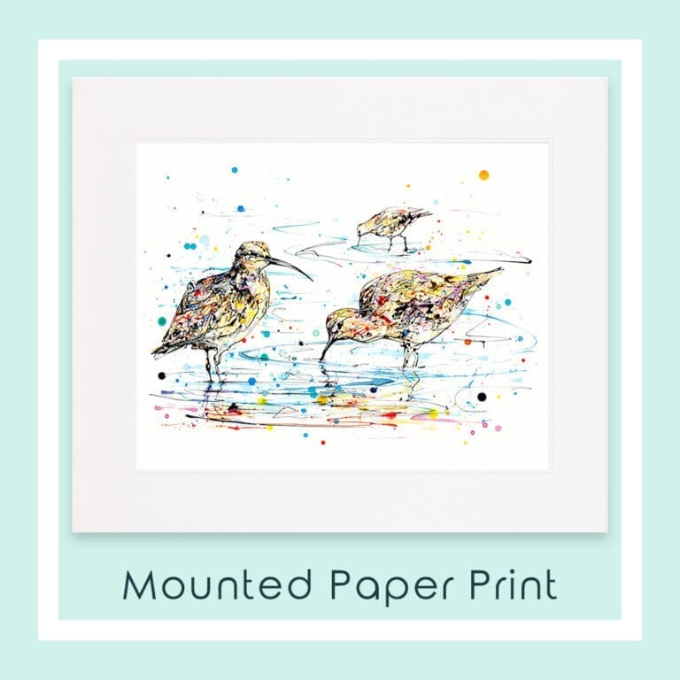 Reflections Curlews Mounted Paper Print