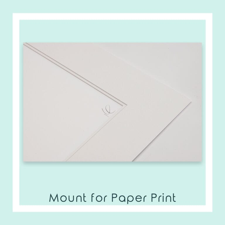 Close up of the Mount Used for Paper Prints